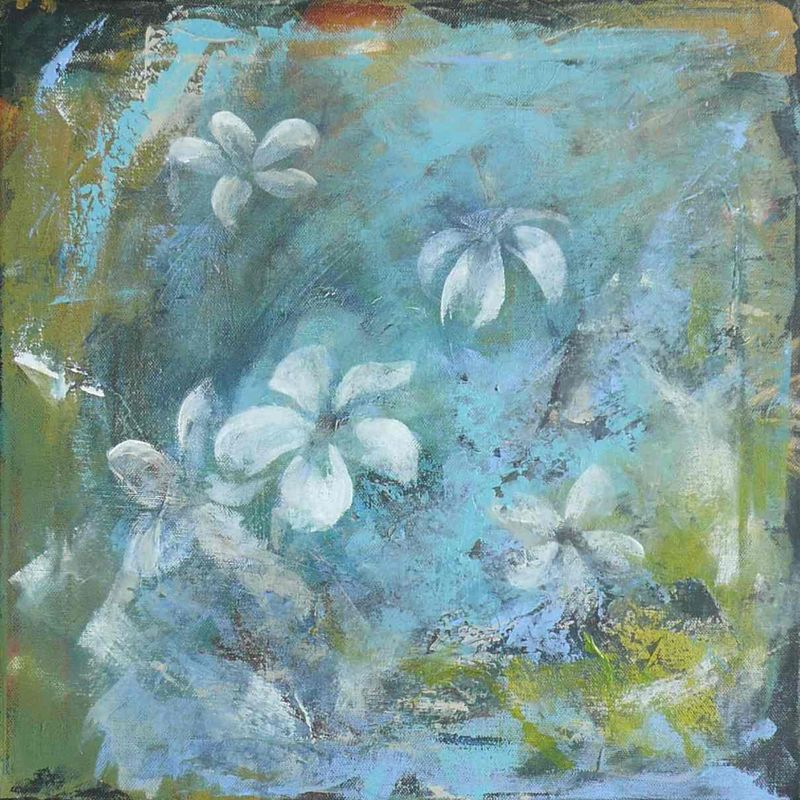 frangipani-flowers-8