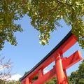 Automne tardif a kyoto ...