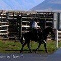 Gaucho de la Pampa