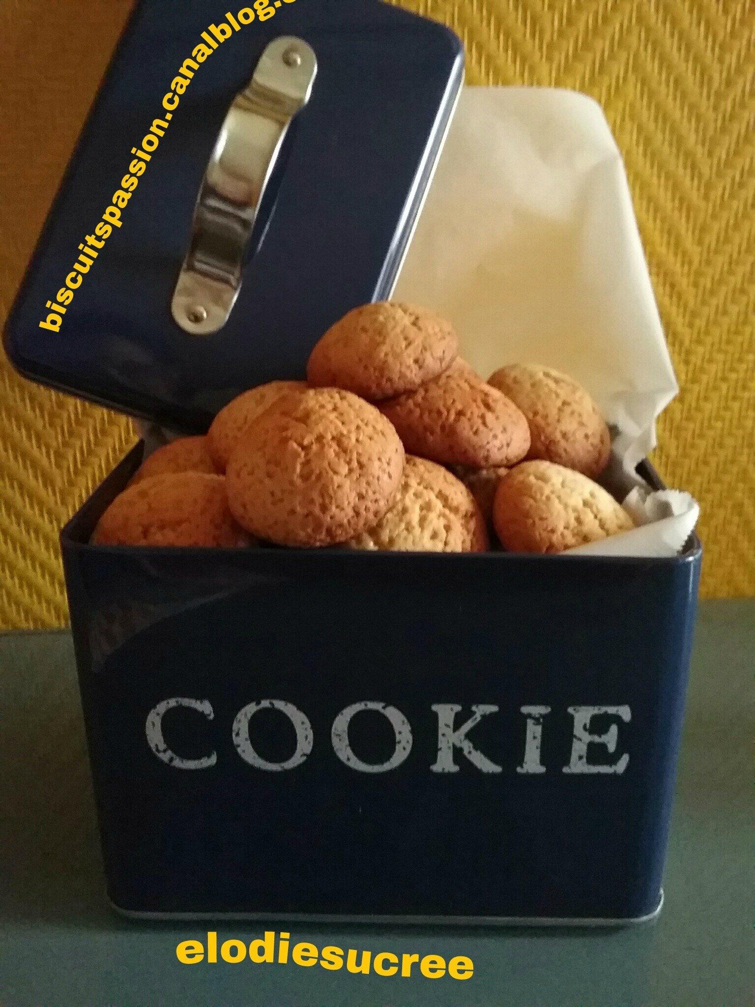 Biscuits au gingembre frais et au miel 062