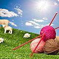 3 juin ..... rencontre avec les tricoteuses d'auffargis !!!