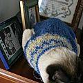 La Lett lopi Vest du chat de Monica :))