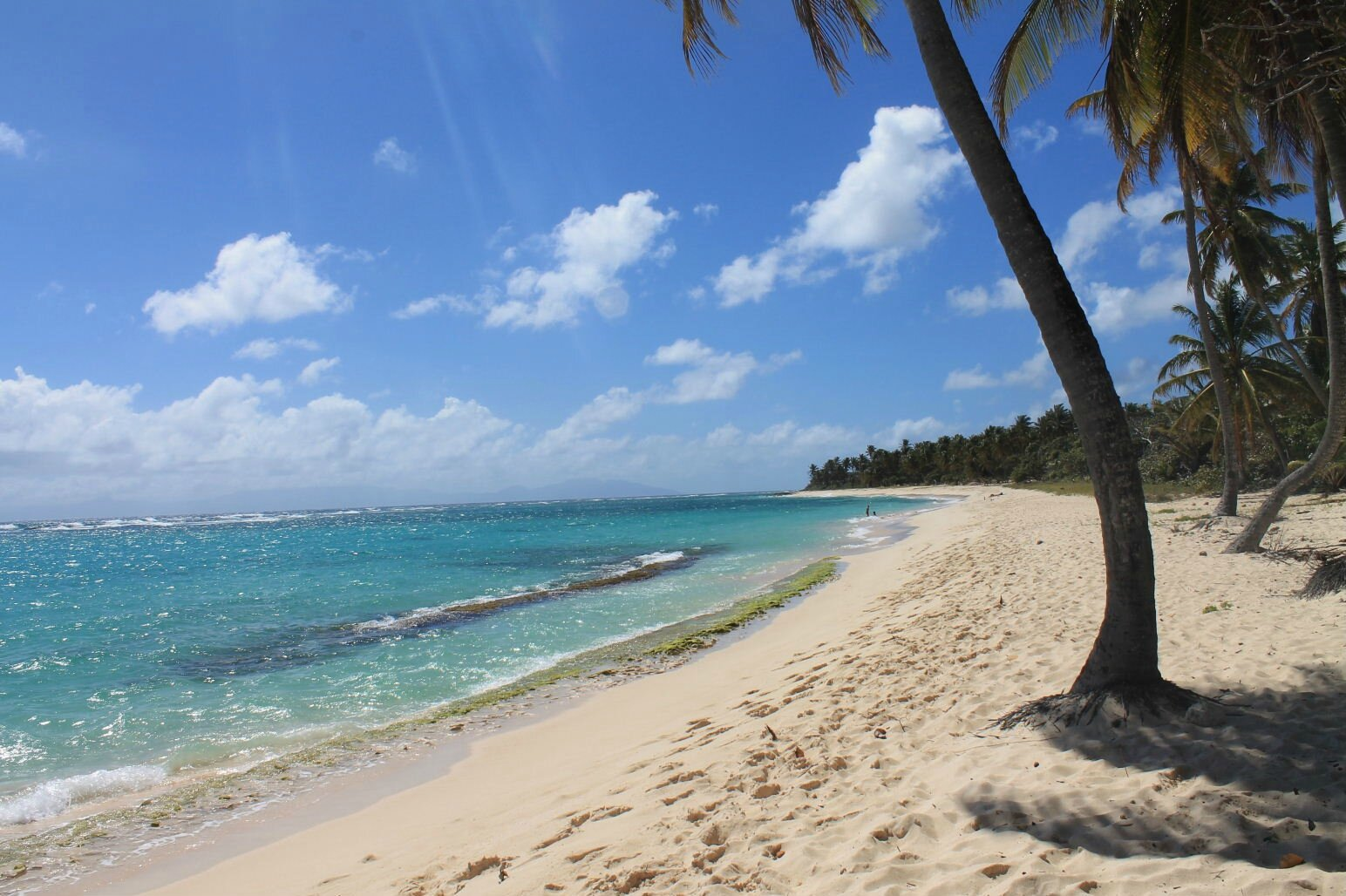 Guadeloupe avec M C 419