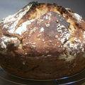 Mon premier pain au levain naturel!