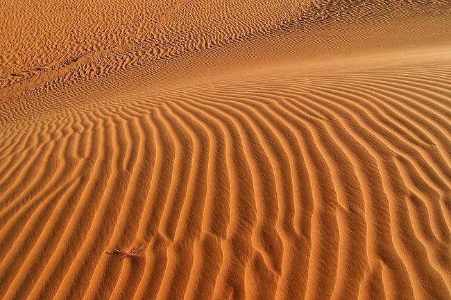 mauritanie22009-505'