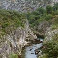 Un pont, une coquille (St Jacques), des aragonites...