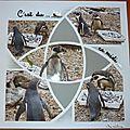 Les pingou