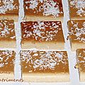 flan grains soja & coco