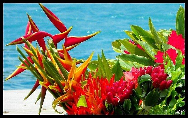 Bora Bora delivery ...