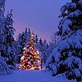 Pensez-y ! Une excellente idée cadeau à l'occasion des fêtes de fin d'année !