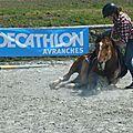 Jeux équestres manchots 2013 (161)