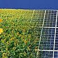 entretien panneaux <b>photovoltaïque</b>