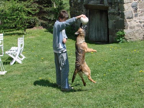 2008 05 12 Kapy qui saute pour attraper le ballon a Martin (5)