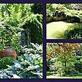 Du jardin des songes ...