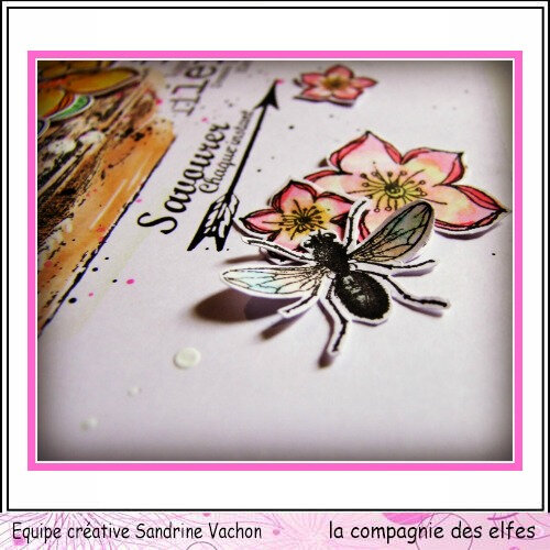 Page Sandrine VACHON dt LCDE avril (2)