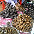Suite cambodge