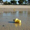 à marée basse...