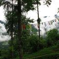 sikkim 8 Khechuperi