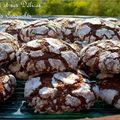 Biscuits craquelés