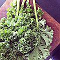 Mes recettes avec du kale