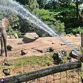 Sébastien : soigneur au zoo de la flèche.