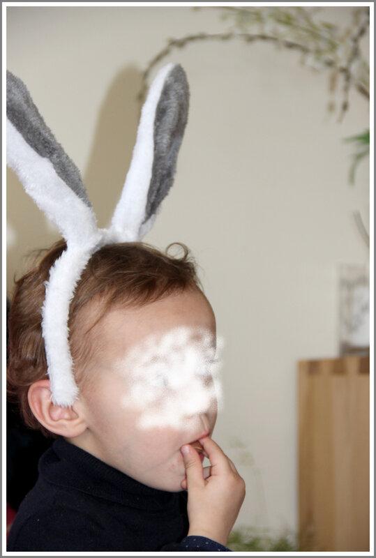 oreilles lapin