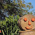 Happy halloween à salou:o)