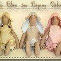 Clan des lapins câlins...