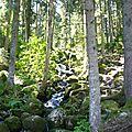 cascade de Merelle (6)