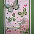Papillons arc-en-ciel/Rainbow butterflies