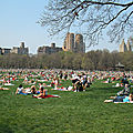 SHEEP MEADOW - CENTRAL PARK