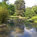 Le Lac Sabine
