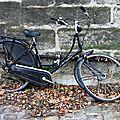 vélo, automne_2625