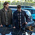 Supernatural - Saison 9 - Episode 5 - Dog Dean Afternoon