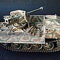 RSO avec Pak 40 - PICT1062