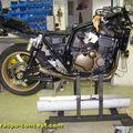 Raspo ZRX Franck 008
