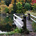 Lac de montorge en automne