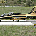 United Arab Emirates-Air Force.