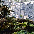 Provence Providence