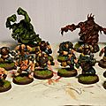 Nains, trolls blood bowl pour ghostdog