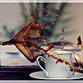 <b>Café</b>, poison ou potion ?
