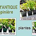 Un grand merci à mon partenaire AROM'ANTIQUE BIO Pépinière <b>plantes</b> <b>aromatiques</b>