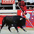 Le n°1999 de TOROS est paru le 12 mai
