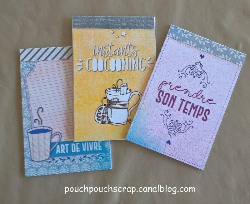 Mes petits carnets d'après une idée d'Anne Sarah (1)