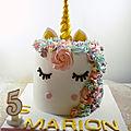 La gâteau licorne de marion (unicorn cake)