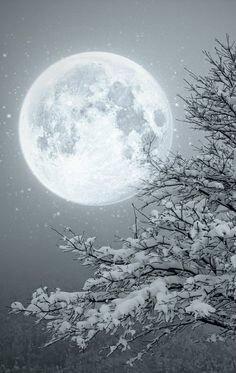 Sortilège de pleine lune