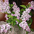 BOUQUET DE LILAS 1