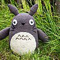 Totoro au royaume des têtes d'épingles