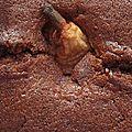 Cake au chocolat (à l'eau) et aux poires entières.