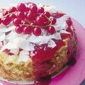 gâteau coco-groseilles
